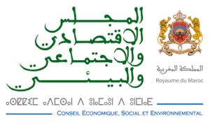 CONSEIL ECONOMIQUE, SOCIAL ET ENVIRONNEMENTAL - visio-conférence sur la santé et la sécurité au travail